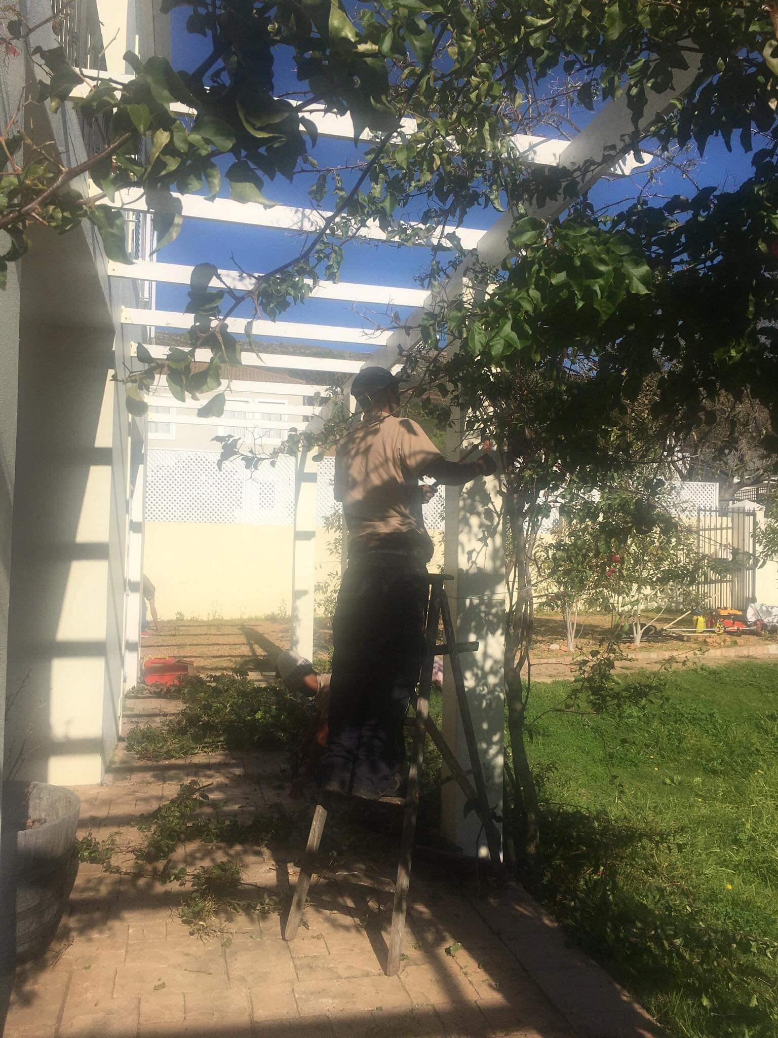 gardening services Cape Town